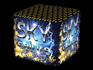 tf0606-skysalute_web