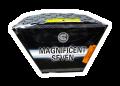 magnificent-seven