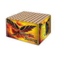 Phoenix-Rising-510x510